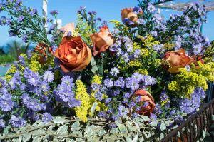 flowers-825082_640